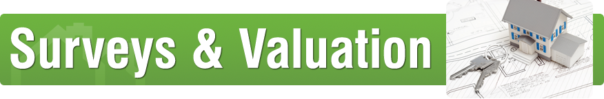 Surveys and Valuation Graphic header